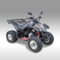 MAXXER 250 SE