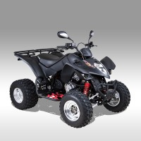 MAXXER 300 SE